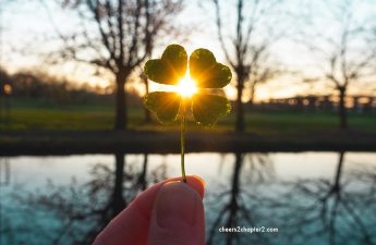 Law of attraction image of a four-leaf clover